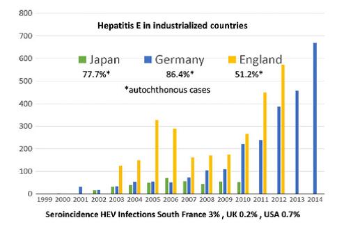 epatite c - Epatite E, una patologia globale emergente