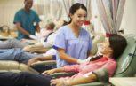 donatori sangue Haemosafety 153x97 - Selezione dei donatori di sangue nelle direttive dell'Unione europea: margini di miglioramento.