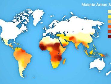 malaria Haemosafety 370x280 - Malaria: l'attuale rischio trasfusionale e le strategie di prevenzione, in particolare nei paesi endemici