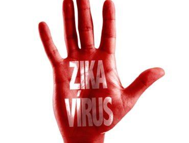 zika virus Haemosafety 370x280 - L'epidemiologia corrente del virus Zika e le recenti epidemie