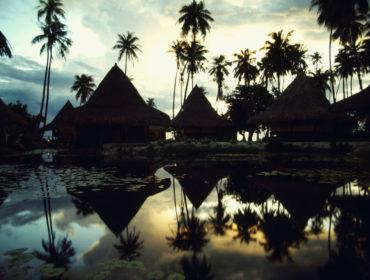 02C29748 370x280 - La siero prevalenza degli arbovirus in Polinesia Francese
