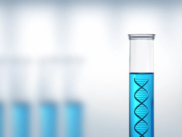 ISS 4615 00205 370x280 - Le nuove tecniche di biologia molecolare ampliano l'esplorazione del mondo dei virus