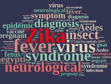 ISS 5440 09461 370x280 - Epidemia da Zika virus: nuovo comunicato da parte dell'OMS