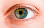 shutterstock 156206093 153x97 - Uveite ed infezione da Zika virus nell'ambito del  danno oculare da neurotropismo virale