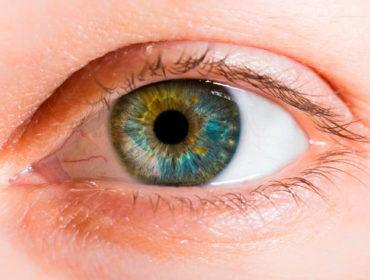shutterstock 156206093 370x280 - Uveite ed infezione da Zika virus nell'ambito del  danno oculare da neurotropismo virale