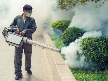fogging 370x280 - Potenziale evolutivo del periodo di incubazione estrinseca del virus dengue da Aedes aegypti