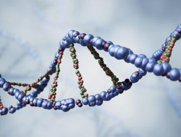 ISS 12275 00247 370x280 - Acidi nucleici virali in pool di plasma umano