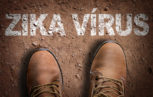 zika virus emergenza finita 153x97 - Aggiornamenti emergenza Zika virus: identificazione dei vettori e misure di prevenzione