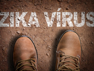 zika virus emergenza finita 370x280 - L'OMS ha dichiarato finita l'emergenza internazionale Zika