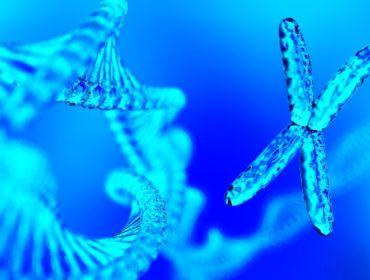 RNA 370x280 - L'Antitrombina quale target terapeutico di agenti che interferiscono con gli RNA in Emofilia A o B