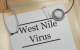 west nile virus 160x100 - State of the art: West Nile Virus circulation surveillance in Italy and transfusion risk early prevention methods