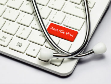 west nile Virus 370x280 - Infezione da virus West Nile in Italia: l'emergenza continua