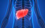 shutterstock 472256644 153x97 - L'UE approva il tenofovir per il trattamento dell'epatite B