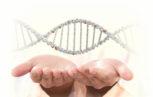 03C22395 153x97 - I tempi sono maturi per la terapia genica nel campo dell'Emofilia