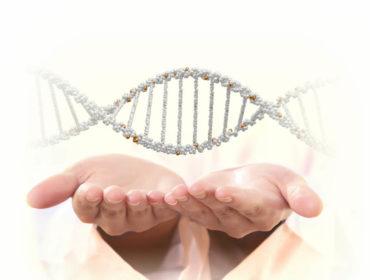 03C22395 370x280 - I tempi sono maturi per la terapia genica nel campo dell'Emofilia