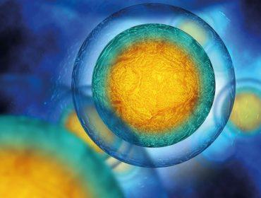 1 370x280 - In Inghilterra il primo studio europeo di modifica del genoma in vivo