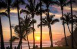 Grand Anse Beach Reunion Island 153x97 - Nuova emergenza infezione da virus Dengue