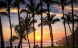 Grand Anse Beach Reunion Island 160x100 - Nuova emergenza infezione da virus Dengue