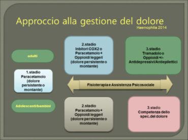 3 1 370x277 - La complessità nella comprensione e nell'approccio terapeutico del dolore nei pazienti con emofilia