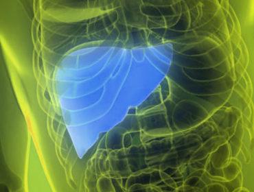 f 1 370x280 - Terapia antivirale diretta per HCV e rischio di eventi cardiovascolari: revisione sistematica dei dati disponibili