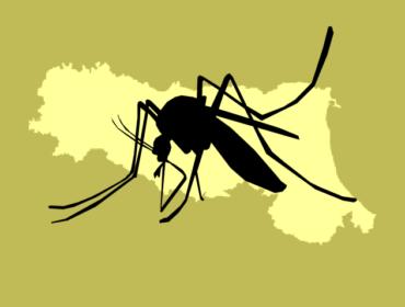 z 1 370x280 - Lotta all'infezione West Nile: l'esperienza dell'Emilia Romagna