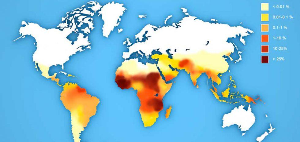 trasmissione malaria
